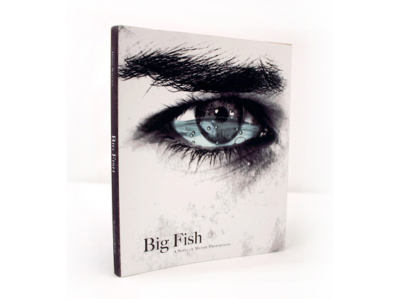 Big fish book cover shanna thunell for Book with fish on cover